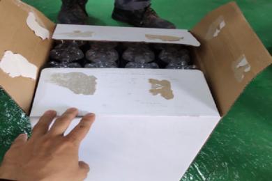 Keo nóng chảy dán thùng carton bị bong tróc, phải làm sao?